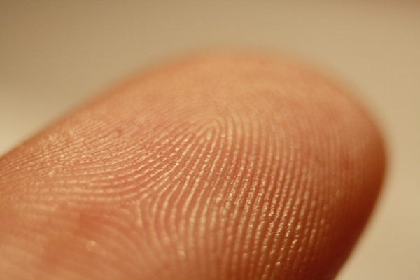Fingerprint_detail_on_male_finger