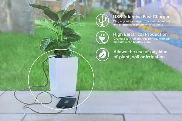 Bioo-planter-pot